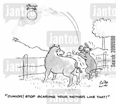 the cow who jumped over the moon cartoon humor: 'Junior! Stop scaring your mother like that!'