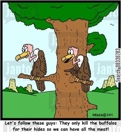 oldwest cartoon humor: 'Let's follow these guys: They only kill the buffalos for their hides so we can have all the meat!'