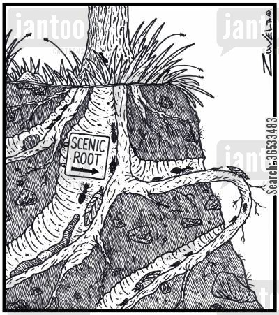 shrubs cartoon humor: Scenic Root: ants, bugs and worms using an exposed tree root as a scenic route.