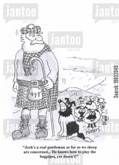 bagpipes cartoon humor: 'Jock's a real gentleman as far as we sheep are concerned... He knows how to play the bagpipes, yet doesn't!'