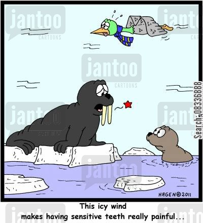 sensitive tooth cartoon humor: 'This icy wind makes having sensitive teeth really painful...'