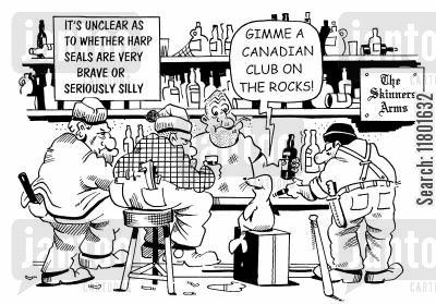 seal cub cartoon humor: 'Gimme a Canadian club on the rocks!'