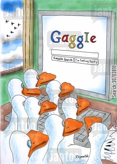 beak cartoon humor: Gaggle - A search engine for geese