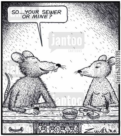 place cartoon humor: Rat: 'So...your Sewer or mine?'