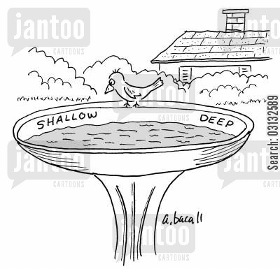 garden ornaments cartoon humor: birdbath