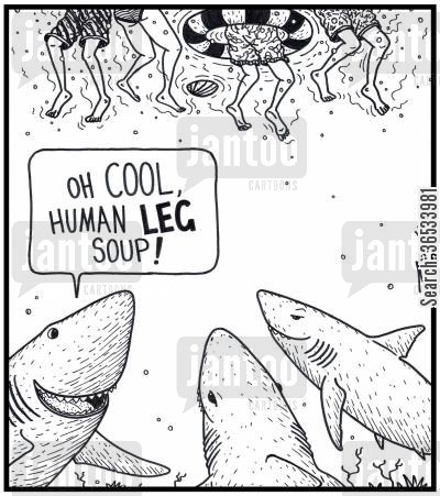 shark attack cartoon humor: Shark: 'Oh COOL,Human LEG soup!' - The Shark's world version of Shark Fin soup.