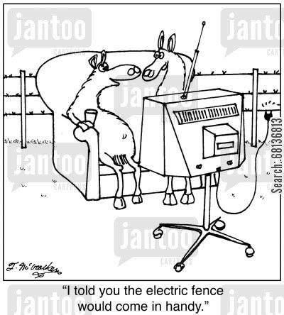 farm animals cartoon humor: 'I told you the electric fence would come in handy.'
