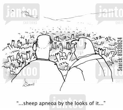 sleep apnoea cartoon humor: '...sheep apneoa by the looks of it...'