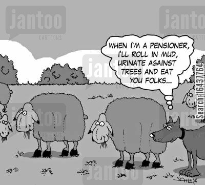 sheep farm cartoon humor: 'When I'm a pensioner, I'll roll in mud, urinate against trees and eat you folks...'