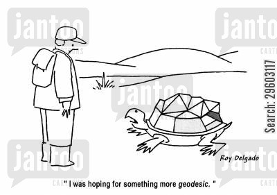 rounded cartoon humor: 'I was hoping for something more geodesic.'
