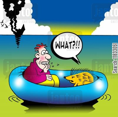 rafts cartoon humor: Porcupine in rescue lifeboat.