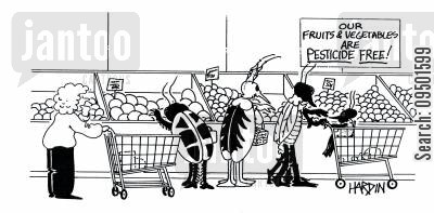 fruit and vegetables cartoon humor: Our fruits and vegetables are pesticide free!