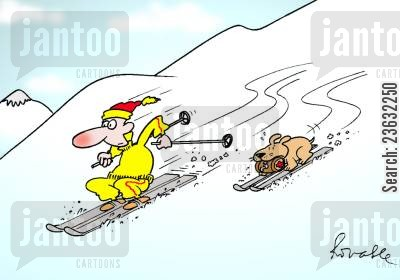 domestic pet cartoon humor: Skier and his dog.