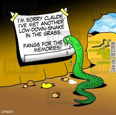 snake in the grass cartoon humor: Sorry Claude - I've met another low-down-snake in the the grass. Fangs for the memories!