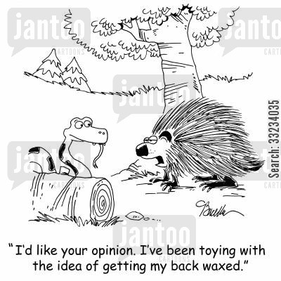 back waxing cartoon humor: 'I'd like your opinion. I've been toying with the idea of getting my back waxed.'