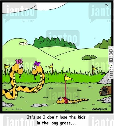 lost child cartoon humor: 'It's so I don't lose the kids in the long grass...'