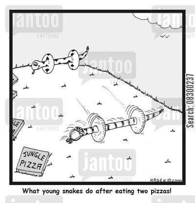 digesting cartoon humor: What Young Snakes do after Eating Two Pizzas