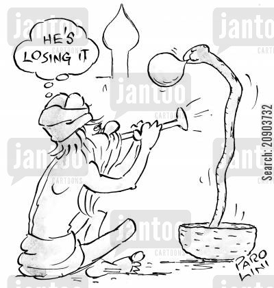 charms cartoon humor: Snake charmer thinks his snake is losing it.
