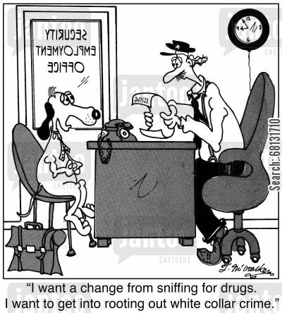 drugs dogs cartoon humor: 'I want a change from sniffing for drugs. I want to get into rooting out white collar crime.'