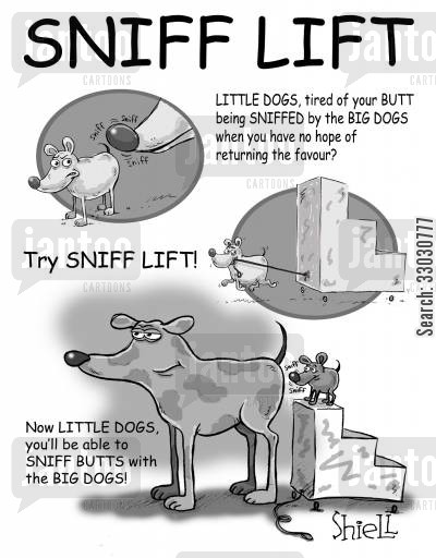 big dogs cartoon humor: Sniff Lift
