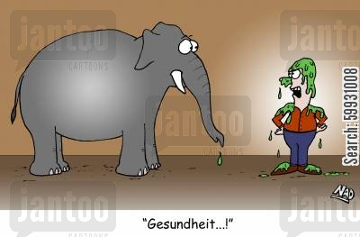 flus cartoon humor: An elephant sneezes all over its trainer - 'Gesundheit...!'