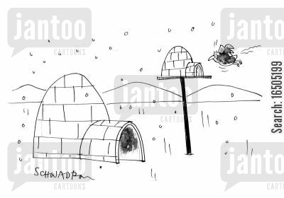 caring for animals cartoon humor: Igloo for birds.