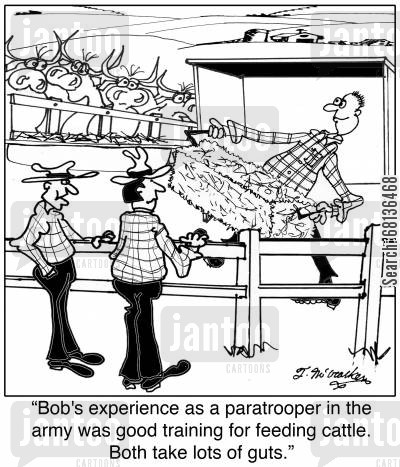 ranch hand cartoon humor: 'His experience as a paratrooper in the army was good training for feeding cattle. Both take lots of guts.'