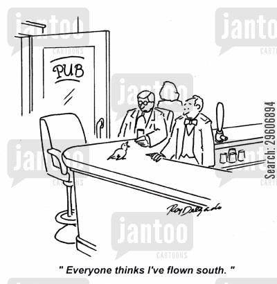 fly south cartoon humor: 'Everyone thinks I've flown south.'