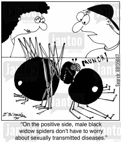 std cartoon humor: 'On the positive side, male black widow spiders don't have to worry about sexually transmitted diseases.'