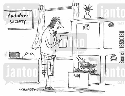 springs cartoon humor: Bird in filing cabinet