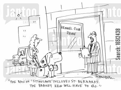 kennel club cartoon humor: 'The ban of stimulants, includes St Bernards. The brandy keg will have to go.'
