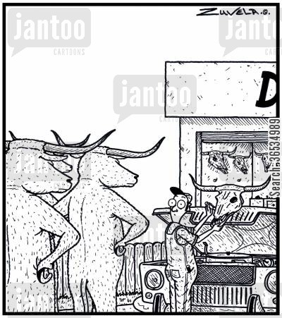 ornament cartoon humor: A group of Angry Steer Bulls have finally found the person who is selling the skulls of their former friends for car bonnet