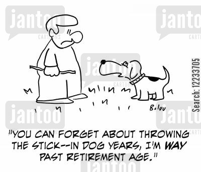 retirement ages cartoon humor: 'You can forget about throwing the stick - in dog years, I'm way past retirement age.'
