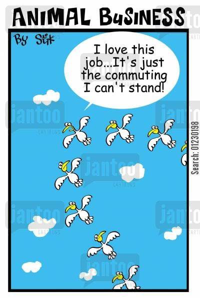 birdies cartoon humor: I Love This Job...Its Just The Commuting I can't Stand.