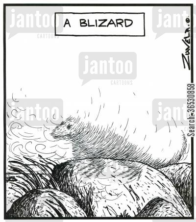 blizzards cartoon humor: A Blizard (a blizzard in the form of a lizard).