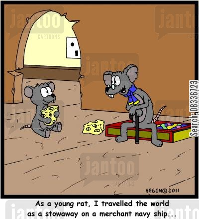 merchant navies cartoon humor: 'As a young rat, I traveled the world as a stowaway on a merchant navy ship...'