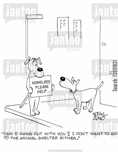 animal shelter cartoon humor: 'Can I hang out with you? I don't want to go to the animal shelter either.'