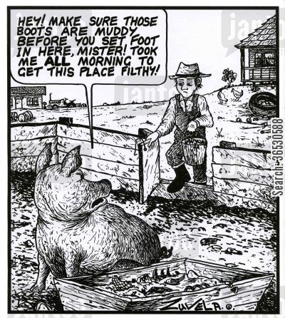 oink cartoon humor: 'Hey! Make sure those boots are muddy before you set foot in here,mister! Took me all morning to get this place filthy!'