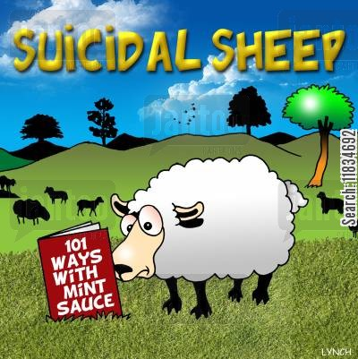 gravy cartoon humor: Suicidal Sheep: '101 Ways with Mint Sauce.'