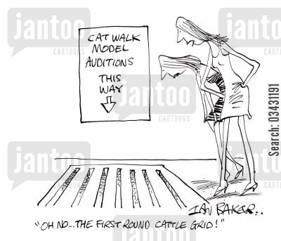 model agencies cartoon humor: 'Oh no...The first round cattle grid!'