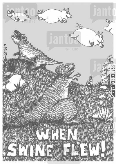 flying pig cartoon humor: When swine flew!