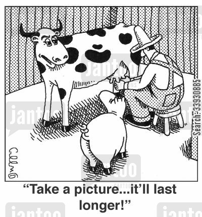 barnyards cartoon humor: 'Take a picture...it'll last longer.'