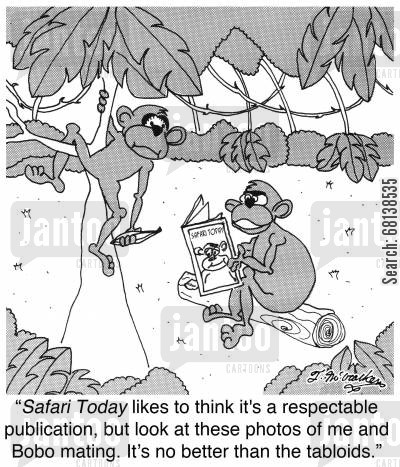 publication cartoon humor: 'Safari Today likes to think it's a respectable publication, but look at these photos of me and Bobo mating. It's no better than the tabloids.'