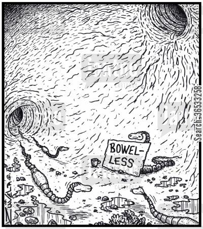 tape worms cartoon humor: Bowel-less.