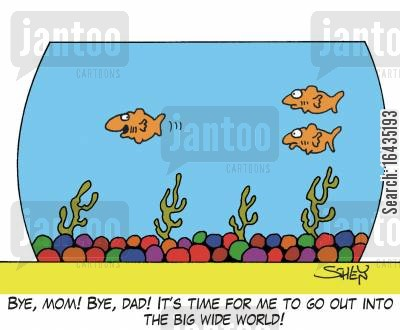leave home cartoon humor: 'Bye, Mom! Bye, Dad! It's time for me to go out into the big wide world!'