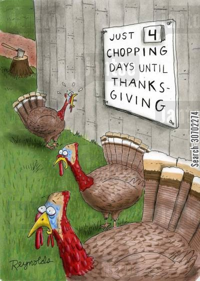 thanksgiving turkey cartoon humor: Just 4 Chopping Days Until Thanksgiving.
