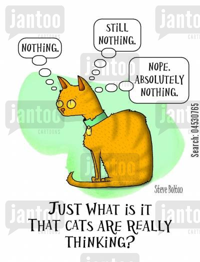 thoughtless cartoon humor: 'Just what is it that cats are really thinking?'