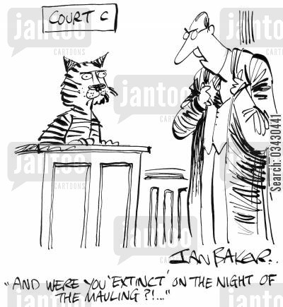 maul cartoon humor: 'And were you 'extinct' on the night of the mauling?!...'