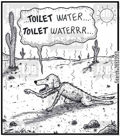fatigued cartoon humor: '...TOILET water...TOILET waterrr...'