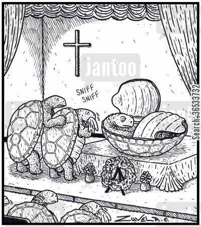 funeral services cartoon humor: A dead Turtle in his half open shell as a coffin.